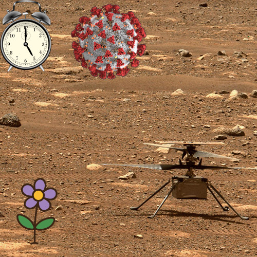 Ingenuity on Mars, the pandemic, and where'd that flower come from?